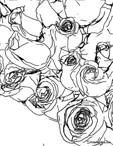 Beautiful roses coloring page for Valentines day